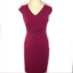 Adrianna Papell Berry Dress
